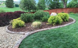 More Landscaping